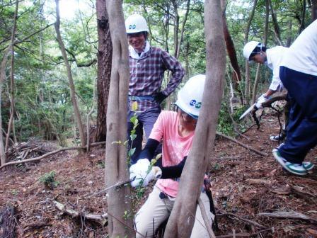 活動名:職員ボランティア養成講座(2014.7.6)の写真