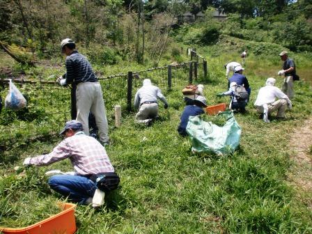 活動名:にしのみや都市型里山ボランティア育成セミナー<第2回>の写真