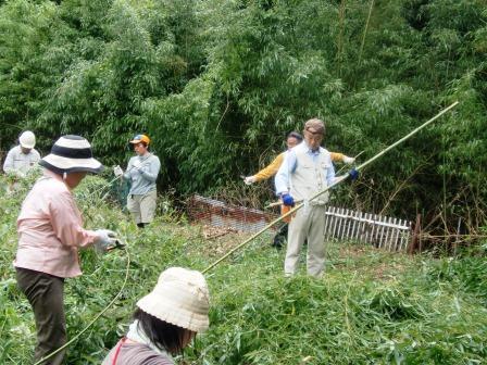 活動名:にしのみや都市型里山ボランティア育成セミナー<第3回>の写真